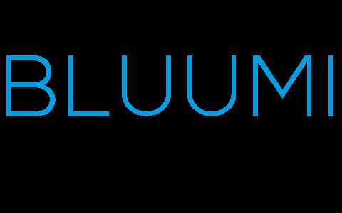 Bluumi España